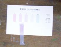 COD(化学的酸素要求量試験紙)で水の汚れ具合を判定しました。 (3).JPG