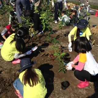 植樹祭2.JPG