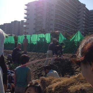植樹祭3.JPG