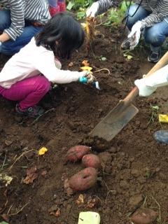 収穫祭 1.JPG